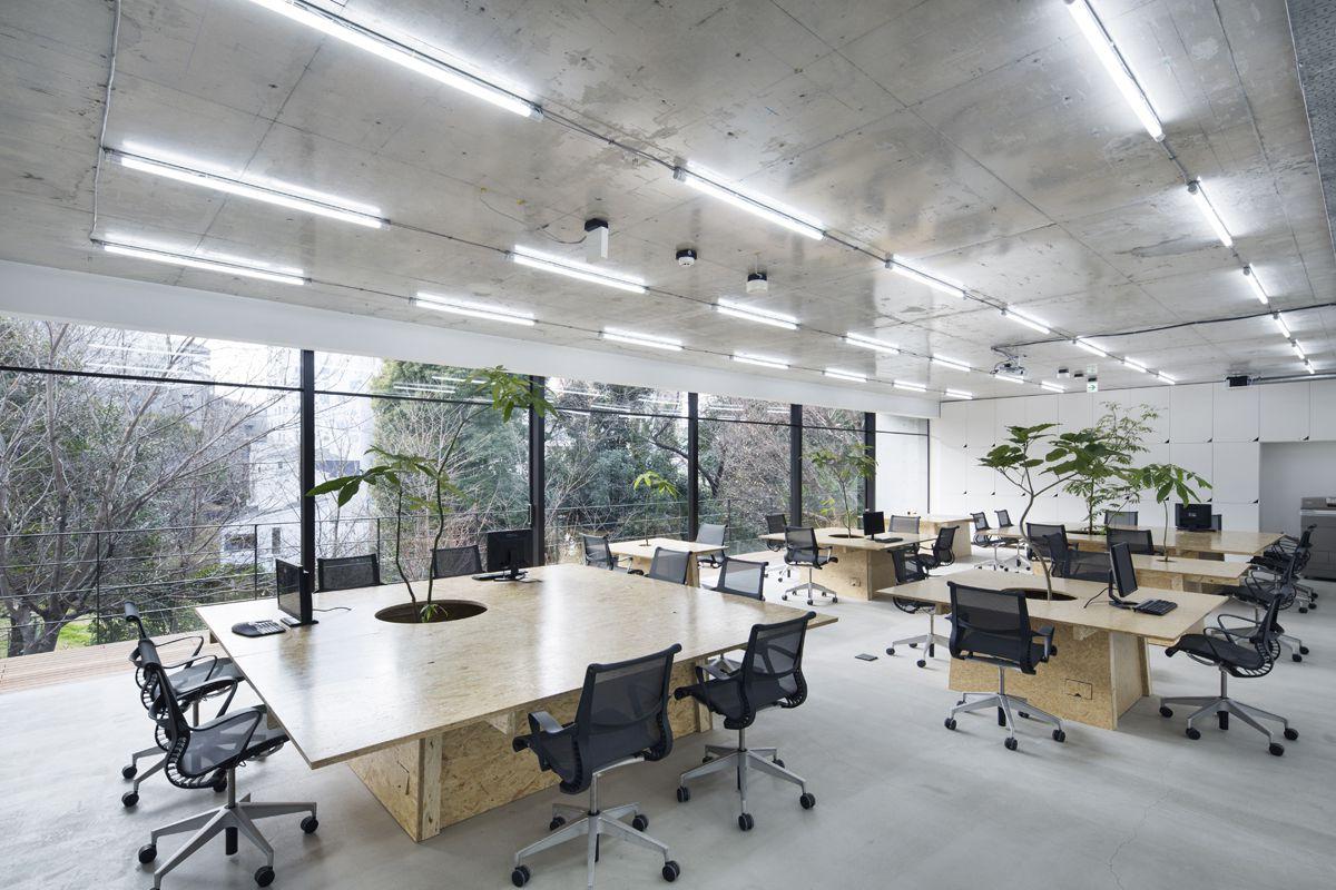 thiết kế nội thất văn phòng phong cách tối giản 2
