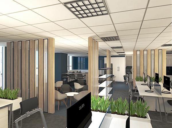 cây lưỡi hổ cây xanh văn phòng